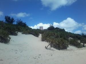 Kenia-Lamu-Shela-duinen